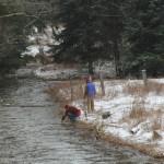 Laurel Fork_Snow_1300