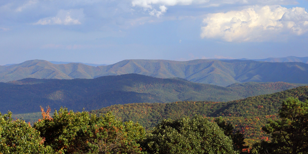 Shenandoah Mountain 1300